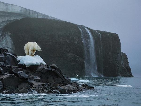 El calentamiento global está aumentando la temperatura de nuestro planeta alterando el clima